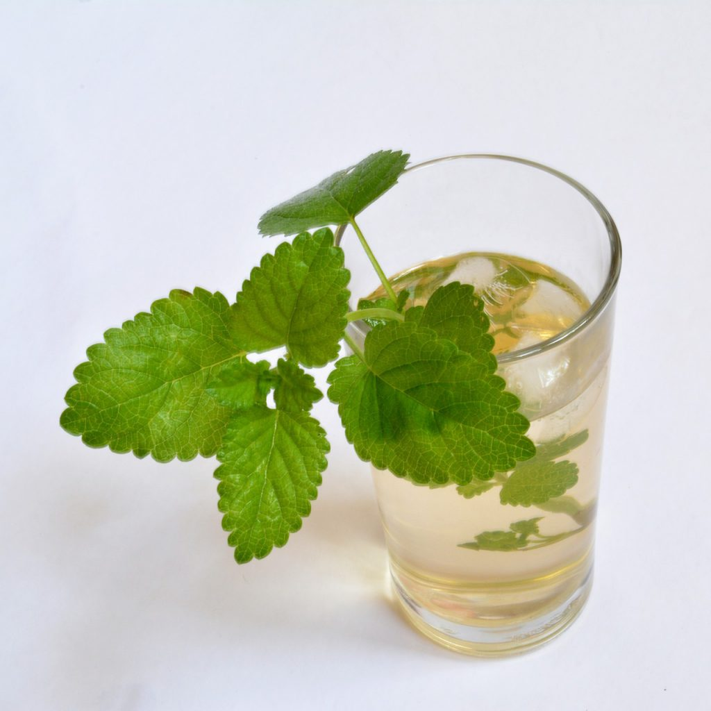What Is Lemon Balm - Ice Tea