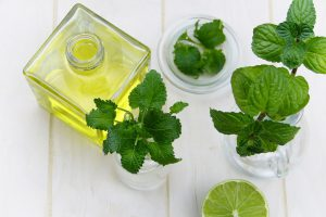 Leaf - Aromatherapy For Stress Relief
