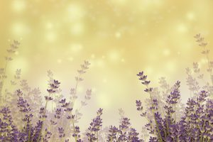 Nature - Aromatherapy For Stress relief