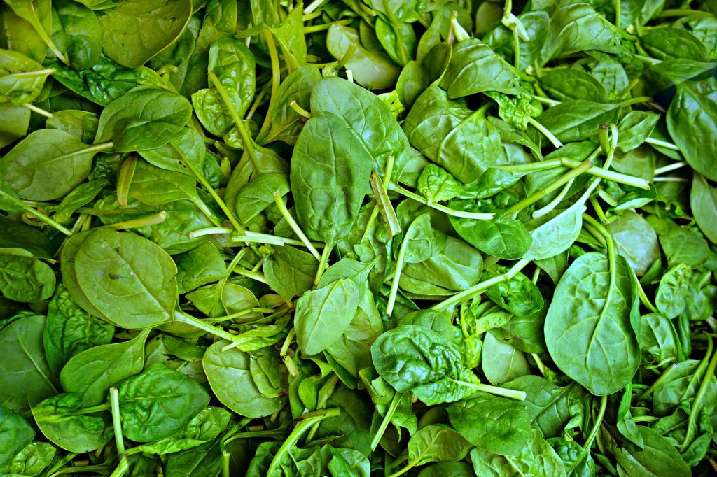 Spinach - Source of Folic Acid