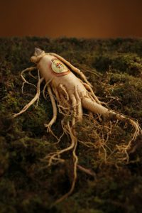 Ginseng for You