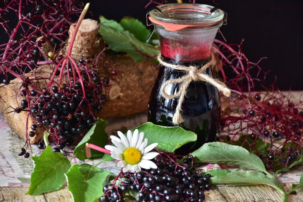 Elderberries For You