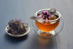 How To Make Oregano Tea